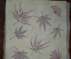 Delicate leaves by Sheila Allen